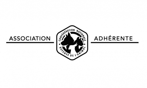 association-adherente noir