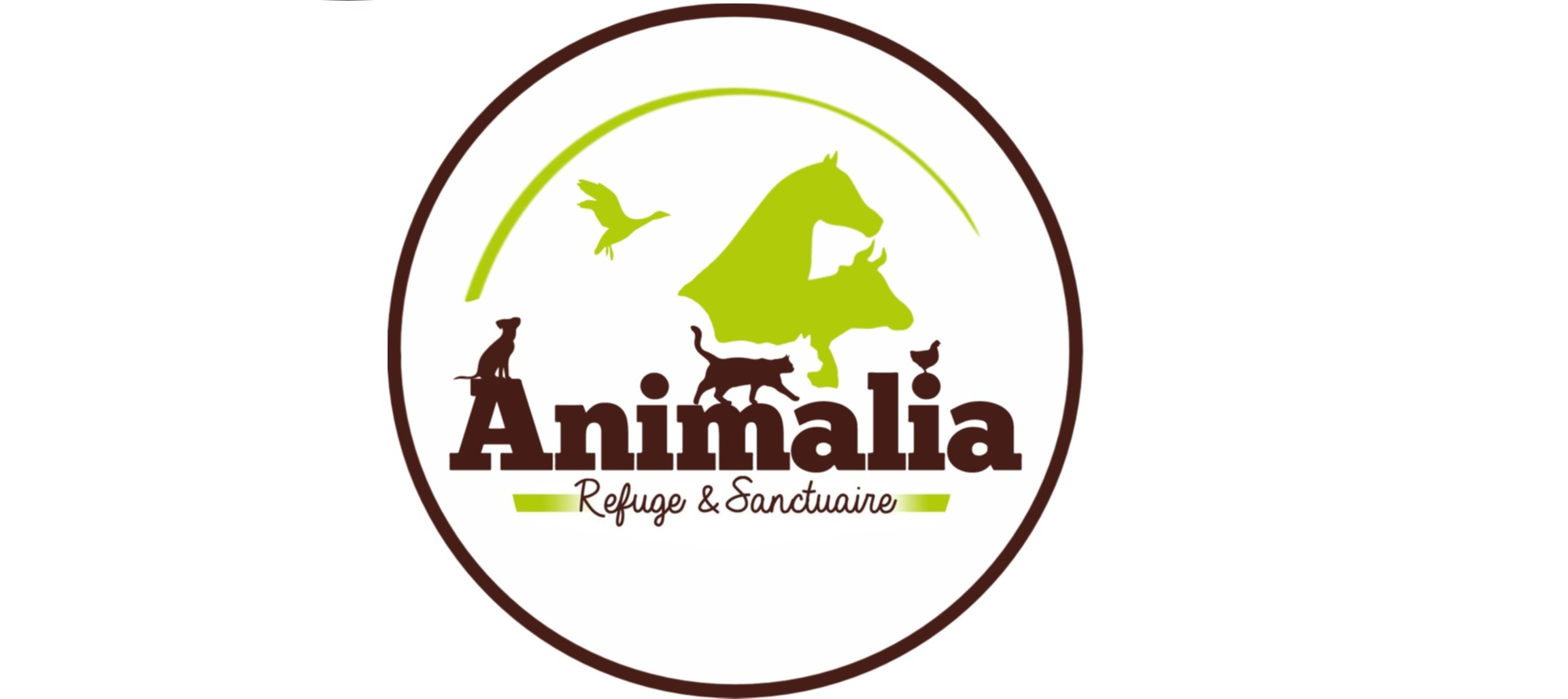 logo animalia en long