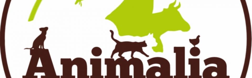 animalia logo 1024×1024