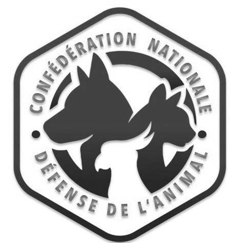logo confederation simple
